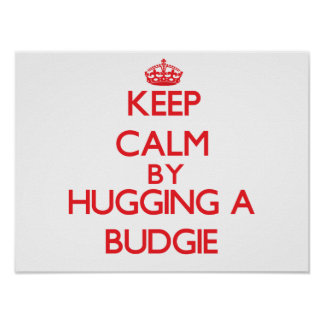 Keep calm by hugging a Budgie Print