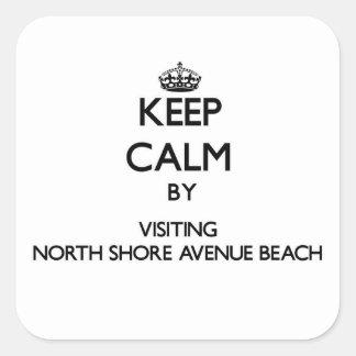 Keep calm by visiting North Shore Avenue Beach Ill Square Sticker