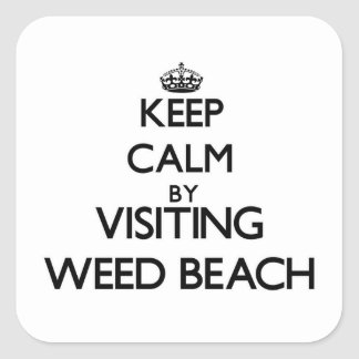 Keep calm by visiting Weed Beach Connecticut Stickers