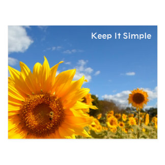 Keep It Simple with sunflowers Postcard