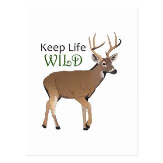 KEEP LIFE WILD POSTCARD