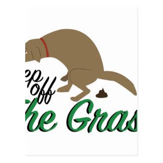Keep Off Grass Postcard
