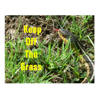 Keep Off the Grass Post Cards