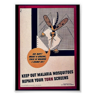 Keep Out Malaria Mosquitoes Repair Your Torn Scree Poster