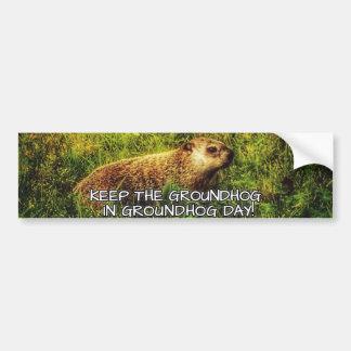 Keep the Groundhog in Groundhog Day bumper sticker