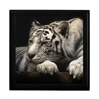 Keepsake Box Large/White Tiger