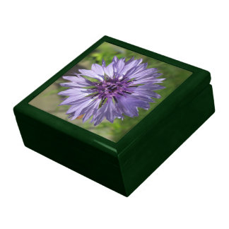 Keepsake Box - Lilac/Purple Bachelor's Button