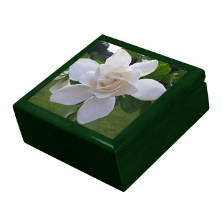 Keepsake Box - Naturally Gorgeous Gardenia