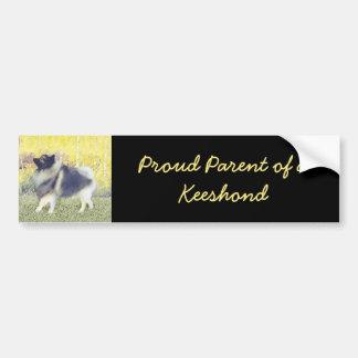 Keeshond Aspen Painting - Cute Original Dog Art Bumper Sticker