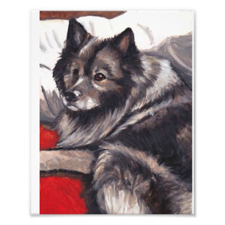 Keeshond Dog Art Print
