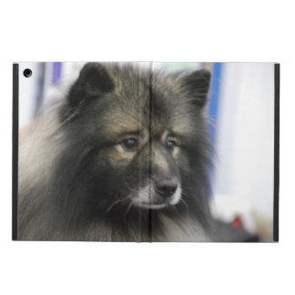 Keeshond Dog iPad Air Cover