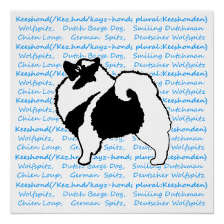 Keeshond (Graphics & Words) Poster