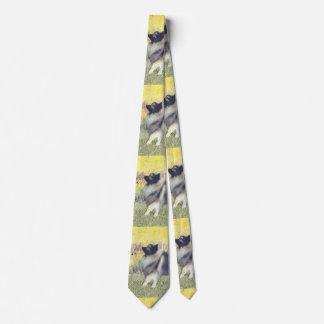 Keeshond in Aspen Tie