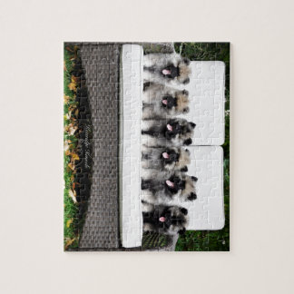 Keeshond puppies jigsaw puzzle