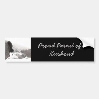 Keeshond Shadow's Creek Painting Original Dog Art Bumper Sticker