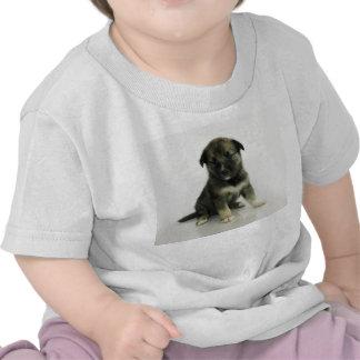 Keeshond Siberian Husky Crossbreed Puppy Tee Shirts