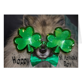 Keeshond St. patrick's Day card
