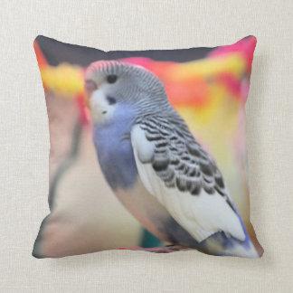 Keet Cushion