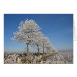 Kelso Trees Card