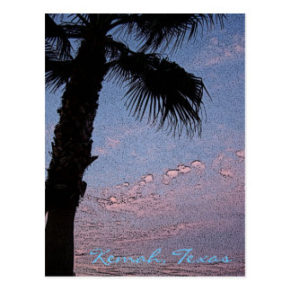 Kemah Palm Sunset postcard - customized