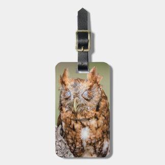 Kendall County, Texas. Eastern Screech-Owl 1 Travel Bag Tag