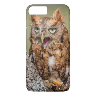 Kendall County, Texas. Eastern Screech-Owl 2 iPhone 7 Plus Case
