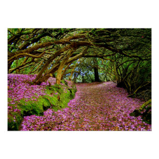 Kenmare  Rhododendron Tunnel - The... - Customized Poster