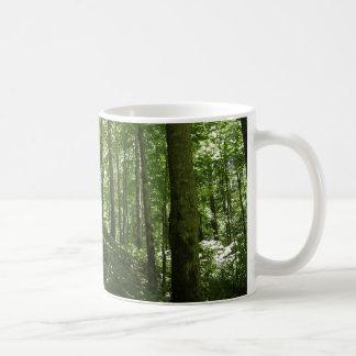 Kentucky Forest Mugs