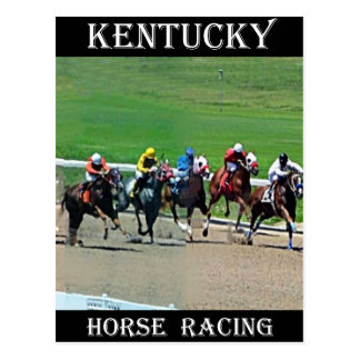 Kentucky Horse Racing Postcard
