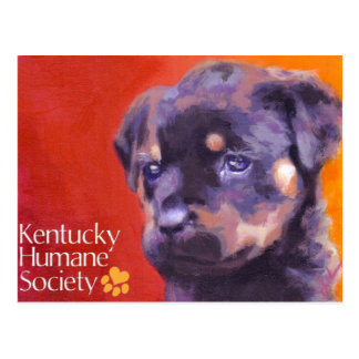 Kentucky Humane Society Postcard
