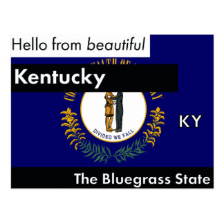 Kentucky The Bluegrass State Postcard