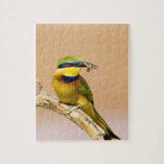 Kenya. Close-up of little bee-eater bird on limb Puzzle