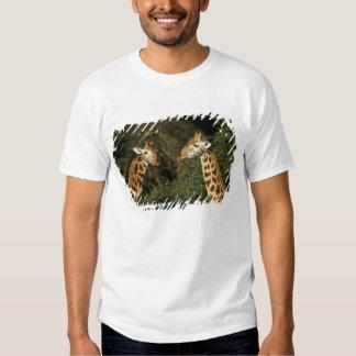Kenya: Lake Nakuru National Park, Rothschild 2 T-shirts