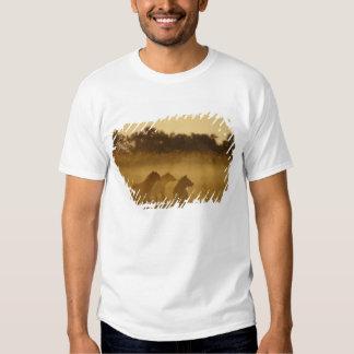 Kenya: Lake Turkana National Park, pack of T-shirts