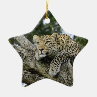 Kenya Leopard Tree Africa Safari Animal Wild Cat Ceramic Ornament