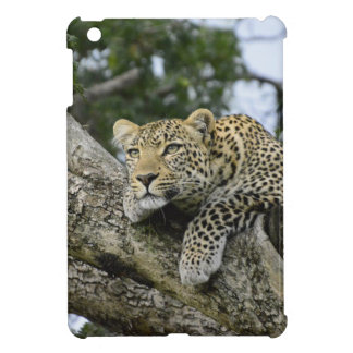 Kenya Leopard Tree Africa Safari Animal Wild Cat iPad Mini Cover