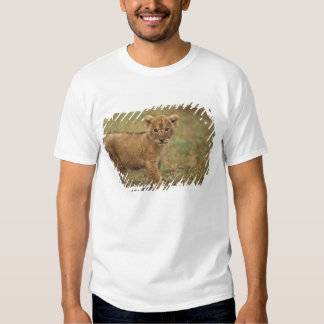 Kenya. Lion Cub (Panthera Leo) Tee Shirt