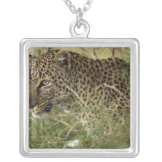 Kenya, Masai Mara Game Reserve. African Leopard 2 Square Pendant Necklace