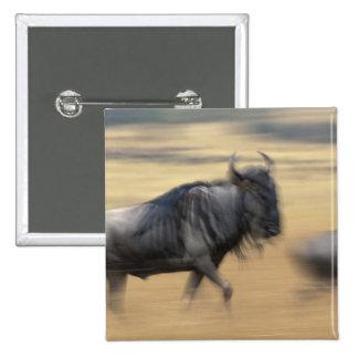 Kenya, Masai Mara Game Reserve, Blurred image 15 Cm Square Badge