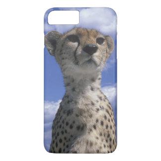 Kenya, Masai Mara Game Reserve, Close-up iPhone 7 Plus Case