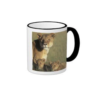 Kenya, Masai Mara Game Reserve, Lion cubs Ringer Mug