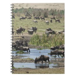 Kenya, No Water No Life Mara River Expedition, 4 Note Book