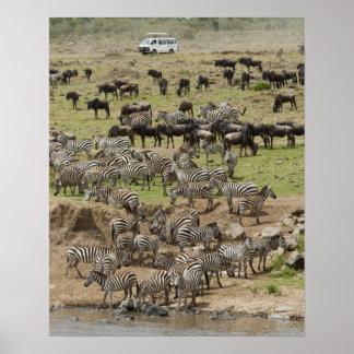 Kenya, No Water No Life Mara River Expedition, 5 Poster