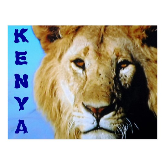 Kenya safari postcard
