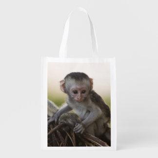 Kenya, Samburu Game Reserve. Vervet Monkey Reusable Grocery Bags