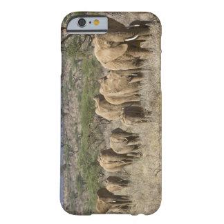 Kenya, Samburu National Reserve. Elephants Barely There iPhone 6 Case