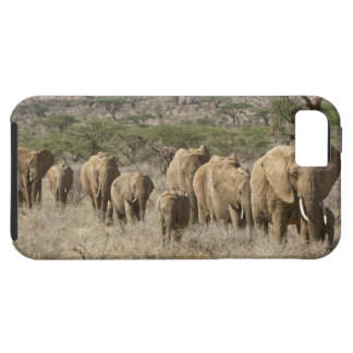 Kenya, Samburu National Reserve. Elephants iPhone 5 Cover