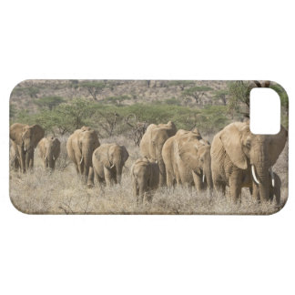 Kenya, Samburu National Reserve. Elephants iPhone 5 Covers