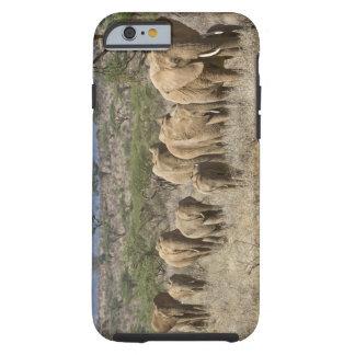 Kenya, Samburu National Reserve. Elephants Tough iPhone 6 Case