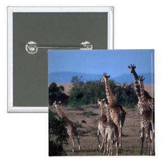 Kenyan Giraffes Button